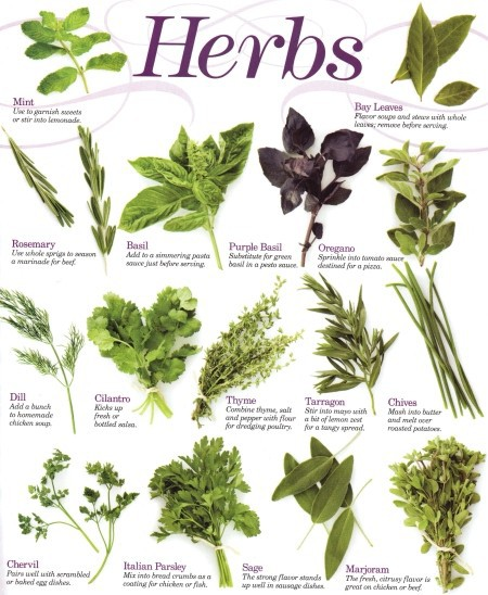 Onelove Herbal Products - Herb Glossary